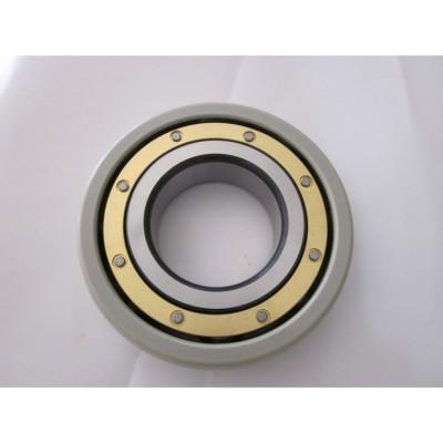 圆柱滚子轴承 耐高温耐磨电绝缘轴承 高转速精密轴承