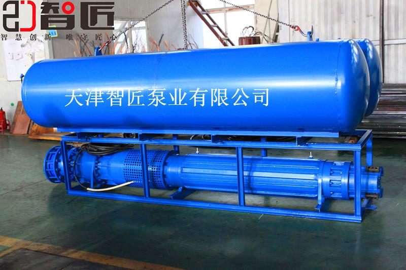 天水水库潜水泵产品性能--天津智匠泵业