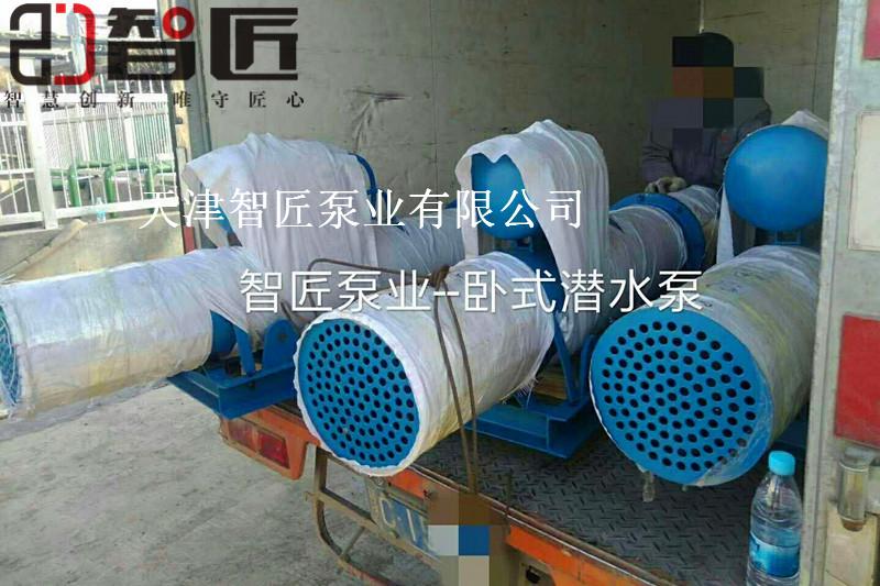 德宏河道潜水泵产品参数--天津智匠泵业