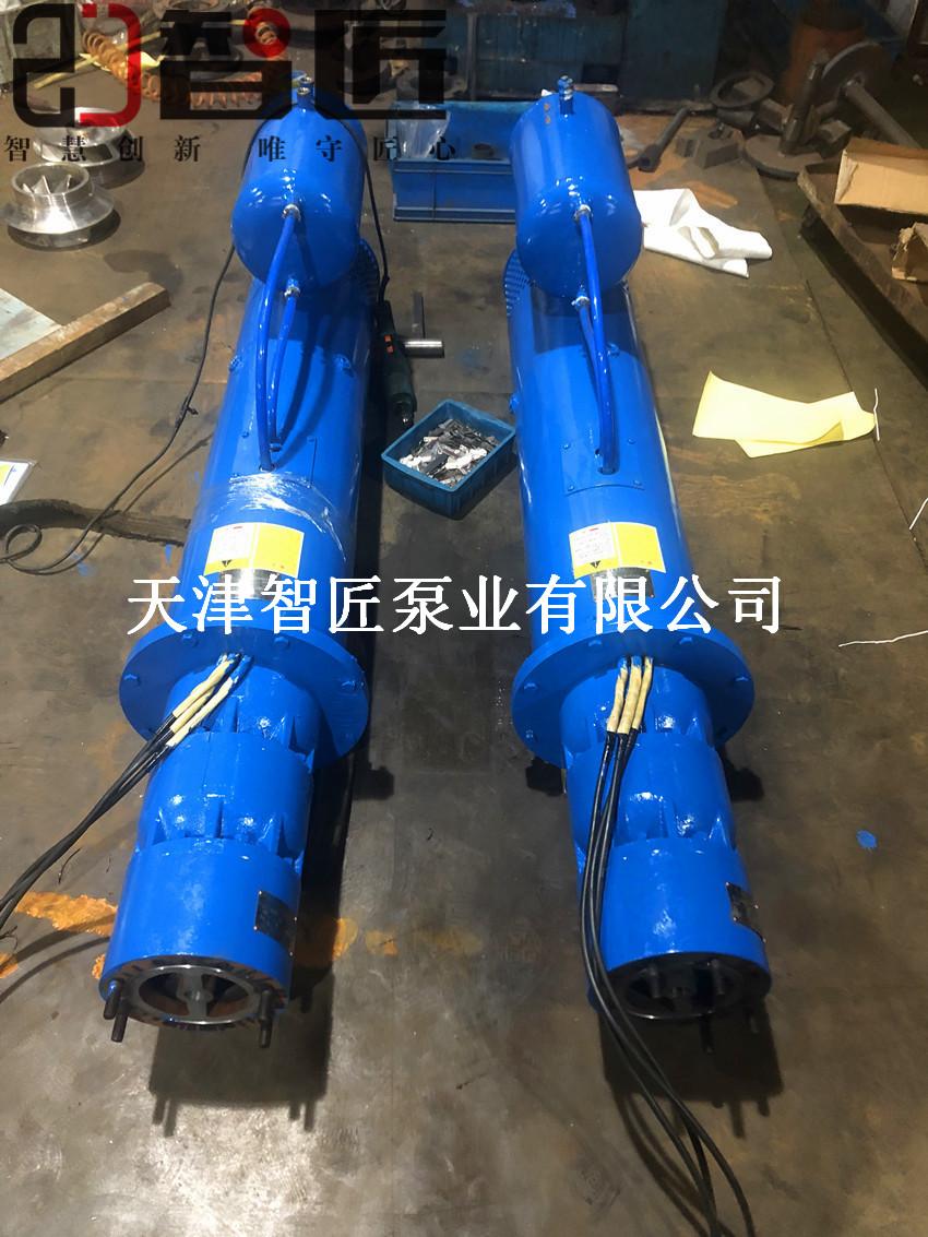 甘孜卧式潜水泵###产品--天津智匠泵业