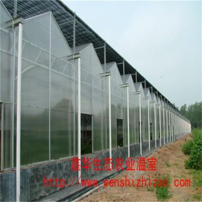 设计建造 文洛式阳光板温室  蔬菜种植温室