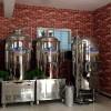 酿酒设备厂家 小型啤酒设备批发 小型酿啤酒设备