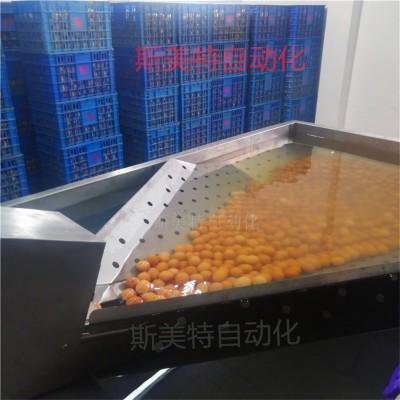 大量生产鸭蛋清洗机 全自动单排鸡蛋洗蛋机 鸡蛋鸭蛋深加工设备