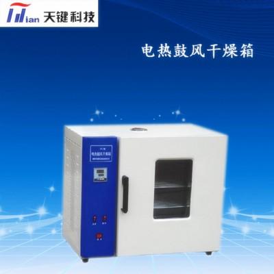厂家直销电热鼓风干燥箱  不锈钢电热板