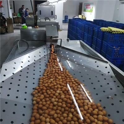 斯美特正品直销双排海鸭蛋自动毛刷清洗机鸭蛋洗蛋机厂家