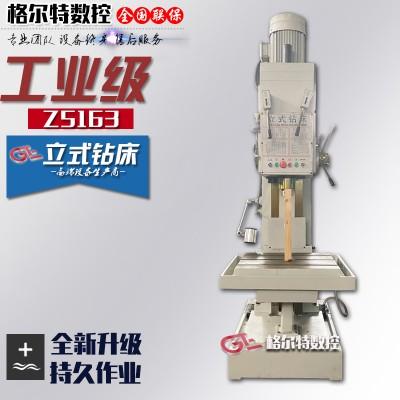 Z5163B立式钻床 方柱型结构 大河丹东牌自动攻丝钻床642245
